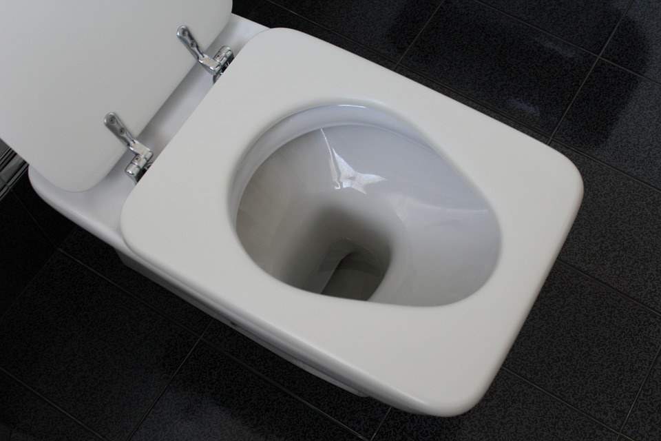 Image of top view of a toilet
