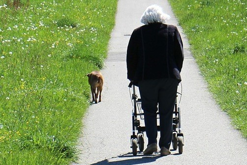 Image of a senior lady using a rollator to walk her dog down a path
